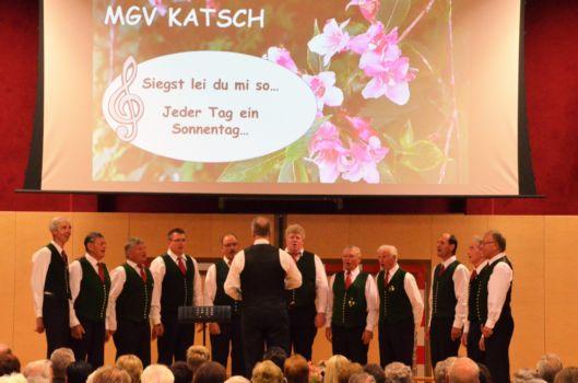 Bezirkssingen 2017 (11)